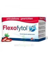 Flexofytol 60 Caps à TOURS