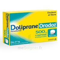 Dolipraneorodoz 500 Mg, Comprimé Orodispersible à TOURS