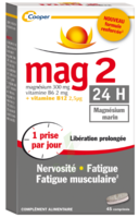 Mag 2 24h Comprimes B/45+15 Offert à TOURS